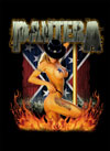 PANTERA (GIRL SOUTH) Flag
