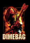 DIMEBAG (FIRE) Flag