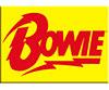 DAVID BOWIE (BOLT) Magnet
